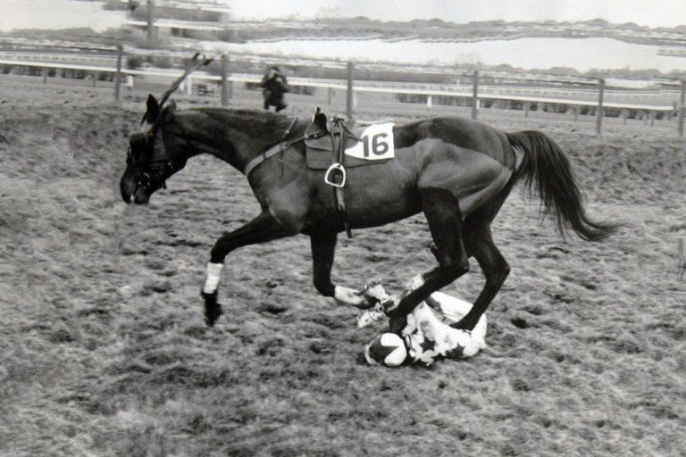 Fallen Jockey at Leicester Races